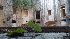 Obilježeno 77 godina od rasformiranja logora Mamula